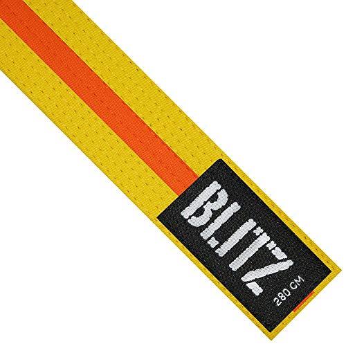 Blitz Colour Stripe - Emblema para cinturón de Artes Marciales, Color Multicolor, Talla 280 cm ⭐