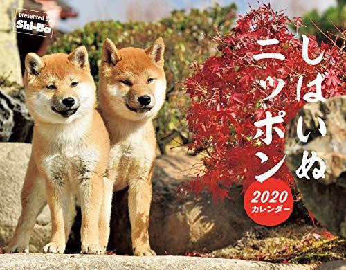 2020カレンダー しばいぬニッポン ([カレンダー])