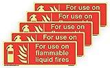 Adhesivo de Vinilo fotoluminiscente Que Brilla en la Oscuridad para Uso en Fuegos líquidos inflamables, 600 mm x 200 mm, 5 Unidades
