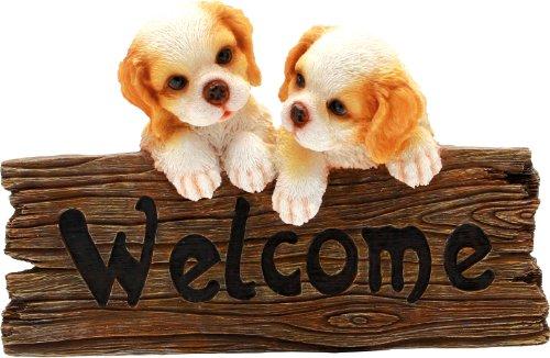 Welcome Cm.29 CERTRE-Chiens