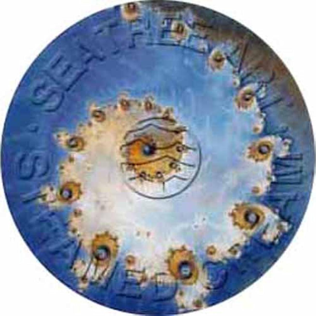 粗い防水上院議員シーツリー スチームモイストクリーム SCR103