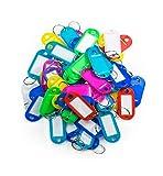 KIPPEN 1200A - Lote de 50 llaveros de plástico con anilla y etiqueta, surtidos