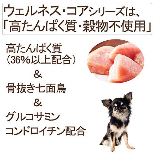 WELLNES(ウェルネス)『ウェルネスコア(高たんぱく質・穀物不使用)小型犬成犬用(1~6歳)骨抜き七面鳥』