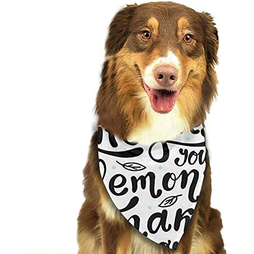 YAGEAD Hund Bandana Welpe und Haustier Bandanas, Motivationszitat, wenn das Leben Ihnen Zitronen gibt, Machen Limonade gelb weiß schwarz Haustier Schal