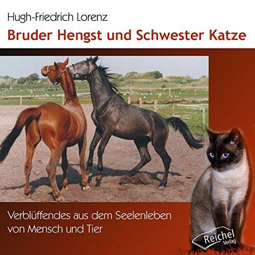 Bruder Hengst und Schwester Katze Titelbild