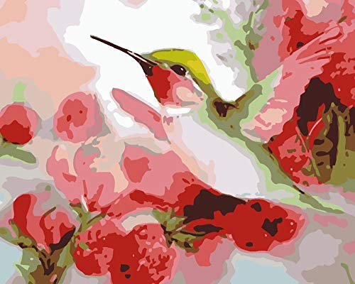 BUFUXINGMA Pintura por Números Adultos DIY Pintar por Numeros Niños Principiantes con Pinceles Y Pinturas Decoraciones para El Hogar, Pájaros Y Flores Rosas 40 X 50 Cm Marco de Madera