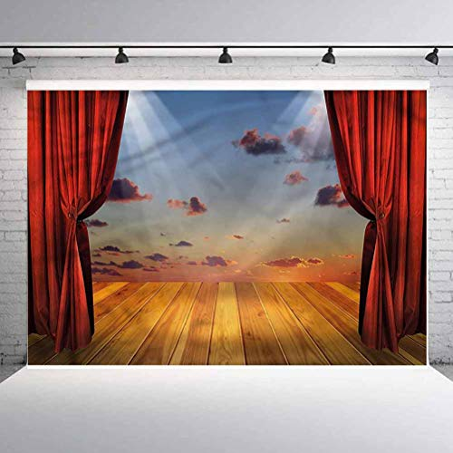 10x10FT Vinyl Wall Photography Backdrop,Musical Theatre,Stage with Drapes Background for Baby Birthday Party Wedding Graduation Home Decoration