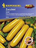 Kiepenkerl Zucchini Soleil - Giallo oro