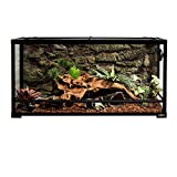 REPTI ZOO Reptile Glass Terrarium Tank Double Hinge Door with Screen Ventilation Large Reptile Terrarium 36' x 18' x 18'(Knock-Down)