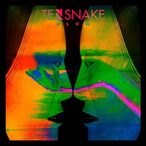 Tensnake