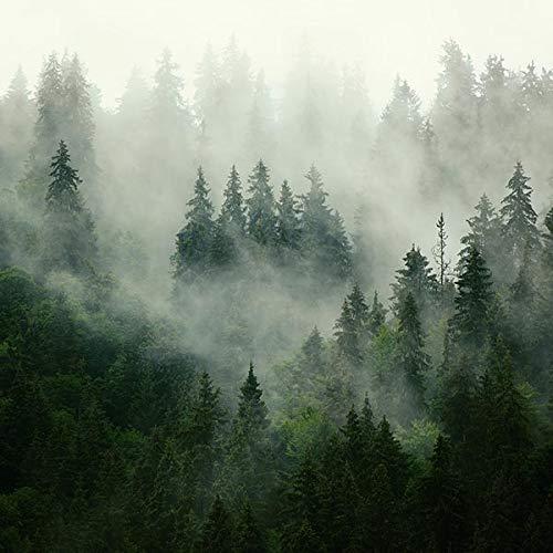 Forwall Fototapete Vliestapete Vlies Wandtapete - Wald Bäume im Nebel Mystisch Panorama V4 (254cm. x 184cm)