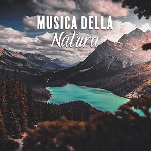 Musica Relax Academia