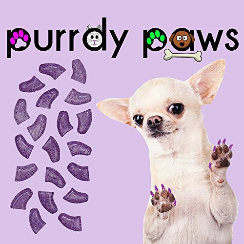 Purrdy Paws 40-Pack Soft Nail Caps for Dogs Claws Purple Holographic Glitter XXL