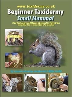 Beginner Taxidermy: Small Mammal