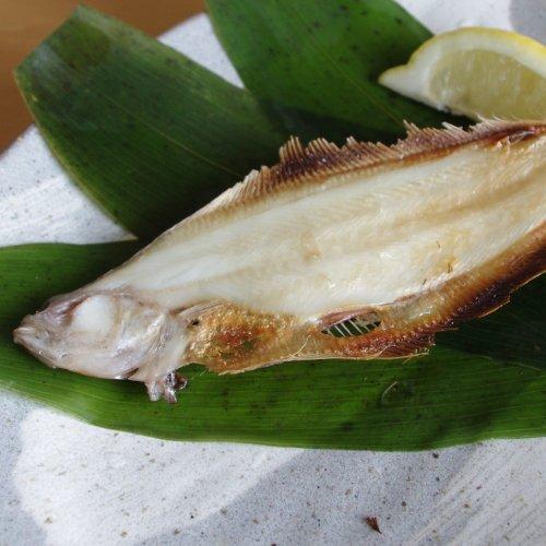 【お土産】柳カレイの一夜干し×10枚セット/淡白で上品な味わい