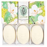 Accentra Handgefertigte Seife La Florentina Magnolie aus der Toskana, 1er Pack (1 x 1 Stück)