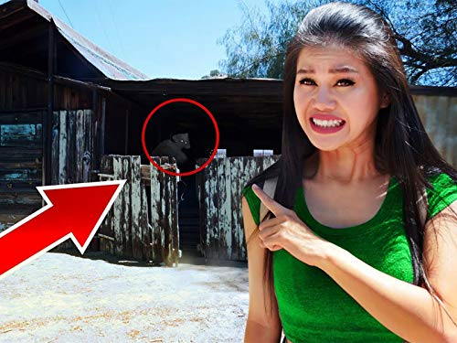 Exploring Haunted Abandoned Town Searching for YouTube Hacker