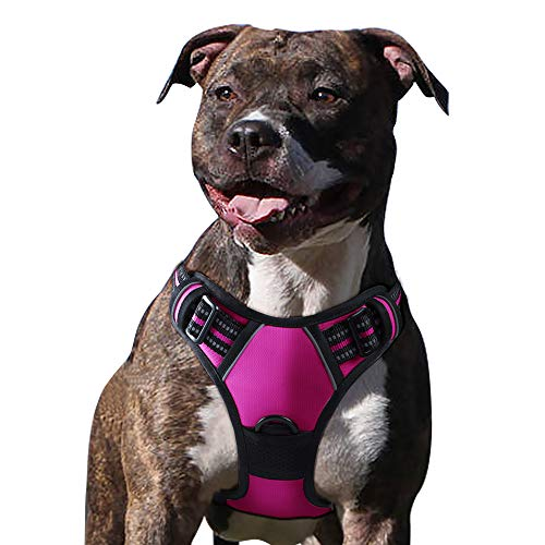 Eagloo Dog Harness No Pull, Walking Pet Harness with 2 Metal Rings and Handle Adjustable Reflective Breathable Oxford Soft Vest Easy Control Front Clip Harness Outdoor for Medium Dogs Rose Red