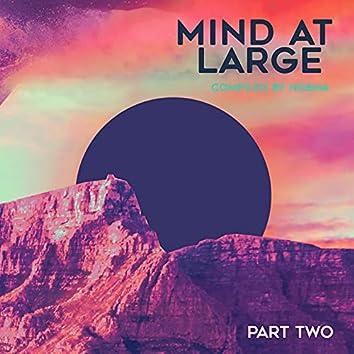 Mind at Large, Pt. II