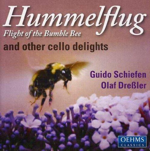 Hummelflug Flights of the Bumble-Bee