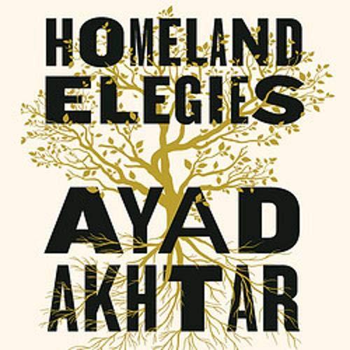 Homeland Elegies cover art