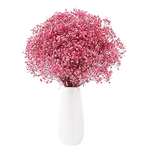 Flores eternas Ramos de Gypsophila de respiración para bebé, sin recorte de área pública adorno planta regalos de moda para mujeres y niñas