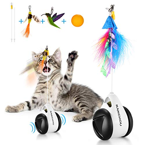 KANCHOU Cat Toys Interactive for Indoor Cats - Balance Cat Toy Chaser with Catnip and 4 Replacement Feather Teaser - Funny Roller Kitten Toys Chasing for Cat Exercise Puzzle Toy (Bird)