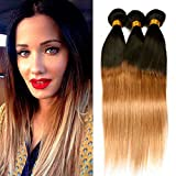 Dai Weier Brazilian Hair Straight 3 Bundles Honey Blond Remy Human Hair Weave Weft 300g Prime Cheap 12 14 16 Inches