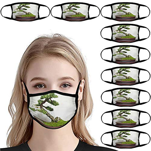 Larch Bonsai / 10 PCS Reusable Breathable Earloop Dust Cover, Fashion, Fishing Cover, Sun Protection, Outdoor Cover, Funny Cover, Motorcycling, Women Men №IS134943
