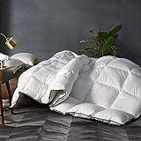 Down Comforter Twin Duvet Insert Down Alternative Quilted Comforter All Season,Plush Microfiber Fill,Machine Washable,Warm Comforter,White