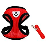 INVENHO Mesh Harness with Padded Vest for Puppy and Cats No Choke Design Ventilation Gift with Leash(Small,Red)