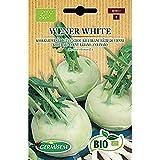 Germisem Biologico Wener White Semi di Cavolo Rapa 1 g