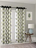 Leaf Curtains Review and Comparison