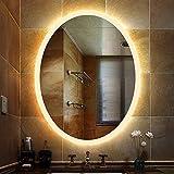 MTFZD 600x800mm Oval LED Beleuchtet Badezimmer-Spiegel Wand- Schminkspiegel for Badezimmer Hänge Rasierspiegel Sowie Wc Hotel (Color : Warm Light, Size : 600x800mm)