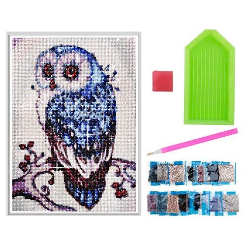 Diealles Shine Kit de Pintura con Diamantes 5D, DIY Pintura de Diamantes para Decoración del Hogar 40x30 cm