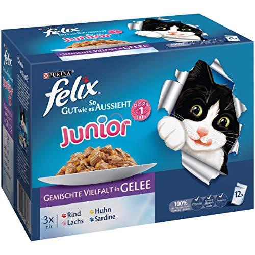 Felix Katzenfutter Junior gemischte Vielfalt 6er Pack, (6 x 12 x 100g) Beutel