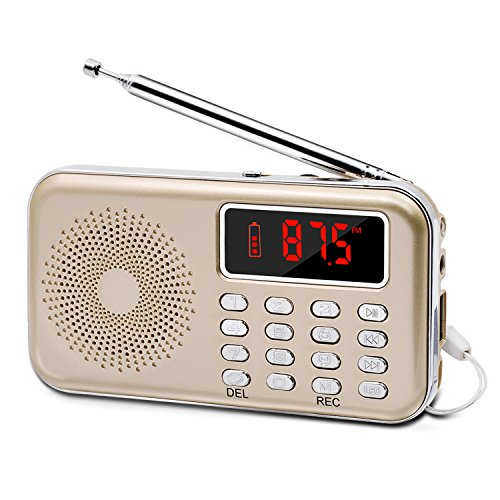 LEFON Mini Digital FM Radio + MP3 Music Player + Digital Voice Recorders Support TF Card/USB Disk with LED Screen Display Emergency Flashlight (Gold)