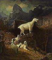 26 世界の名画 - ¥4K-150k 手書き-キャンバスの油絵 - アカデミックな画家直筆 - Rocky 山脈 Goats アルバート・ビアスタット 動物画 - 絵画 洋画 複製画 -サイズ05