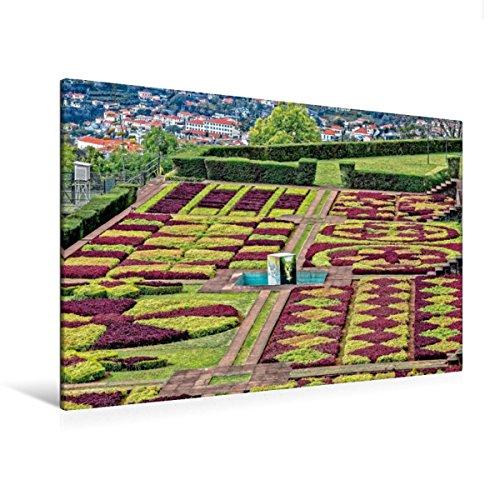 Premium - Lienzo textil 120 cm x 80 cm horizontal, jardín botánico Madeira - Jardim Botnico - Imagen sobre bastidor, imagen sobre lienzo de Madeiras Funchal Metropole (CALVENDO Orte);CALVENDO Orte