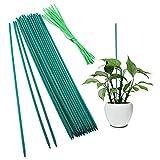 SAVITA 30 Piezas Palitos de Soporte para Plantas Estacas de Madera con 30 Piezas Lazo para Plantas Palitos de Bambú Verde para Ramo Planta en Maceta Estaca para Plantas Pequeñas, 38 cm