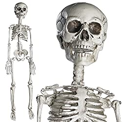 Choose Prextex 76cm, Full Body Halloween Skeleton for Best Halloween Decoration Includes: 1 Full body Plastic Halloween Skeleton with Movable Joints- 76 cm Tall with Hook on Skull for Easy Hanging. Great for Haunted Houses, Graveyard Scenes, Hallowee...