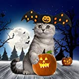 Idepet Pet Dog Halloween Pumpkin Bat Wings Hat Costume Christmas Adorrable Hoilday Costume Decoration Accessories Clothes for Kitten Puppy Small Dogs Cats Pets