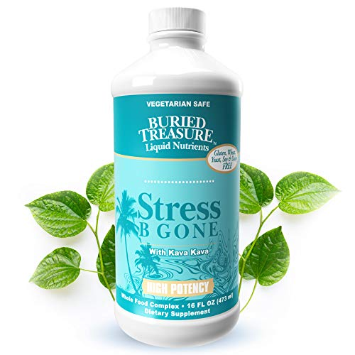 Buried Treasure Stress B Gone with Kava Kava Root, B Vitamins and Vitamin C for Stress Relief and Immune Support Natural Relaxation Tropical Flavors 16 oz Buried Treasure Vitamin C Vitamins