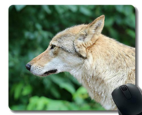 Gaming Mouse Pad Benutzerdefinierte, Maulkorb Raubtier Wolf Home Office Computer Zubehör Mousepads