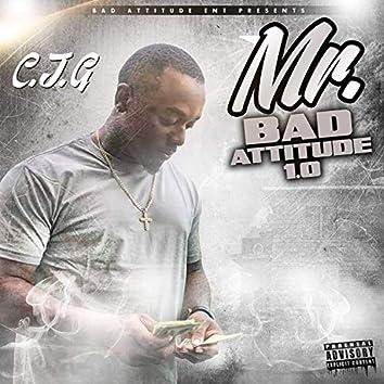 Mr Bad Attitude 1.0