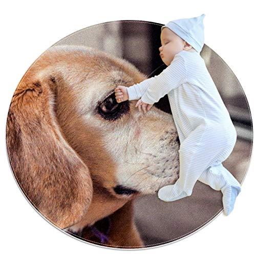Alfombra de área Redonda Suave Alfombrillas Circulares de Piso Antideslizantes Diameter 39.4INCH Alfombrilla de pie de Esponja de Memoria Absorbente,pequeño Perro Beagle Mascota Animal