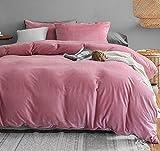 Michorinee - Juego de ropa de cama de invierno de peluche, 220 x 240 cm, cachemira, suave y cálido, forro polar coral, con cremallera, color rosa, 220 x 240 cm + 2 x 80 x 80 cm