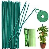 Varillas soporte para plantas,palos para plantas,Estaca...