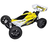 Buggy RC PIRATE RAZOR BRUSHLESS