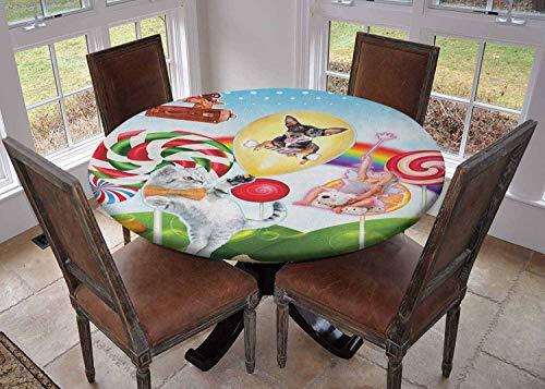 Ronde tafelkleed keuken decoratie, tafelblad met elastische randen, Cartoon Style Hare Familie en een Egel op een Zee Avontuur Kleine Vogels en Lantaarn Multi kleuren, Feesttafels